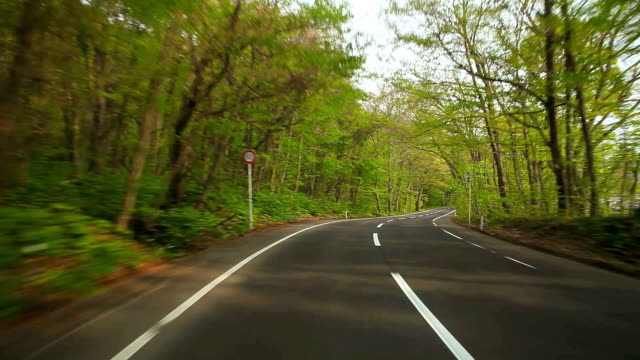 driving at green road - plusphoto stock videos & royalty-free footage