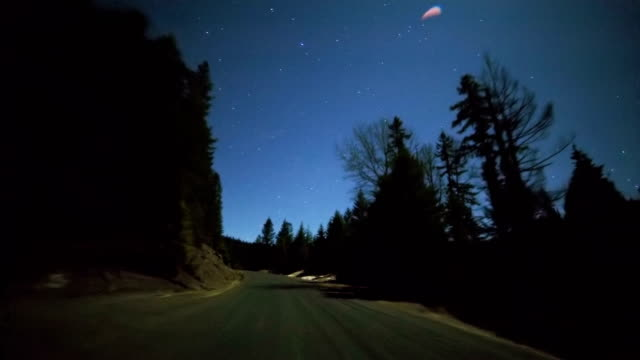 Driving at night under the stars and full moon through forest of fir tree silhouettes on empty road 3
