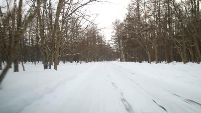練習雪 road - 木立点の映像素材/bロール