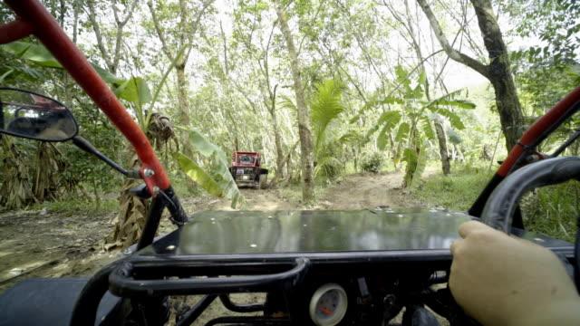 vídeos y material grabado en eventos de stock de conducir el atv en el bosque - área silvestre