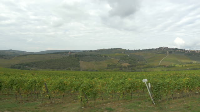 vídeos de stock, filmes e b-roll de driving by vineyards, provence, france (slo mo) - vino