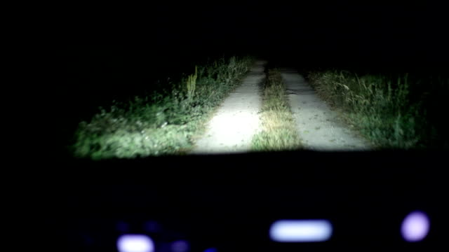 hd: driving car at night - empty road stock videos and b-roll footage