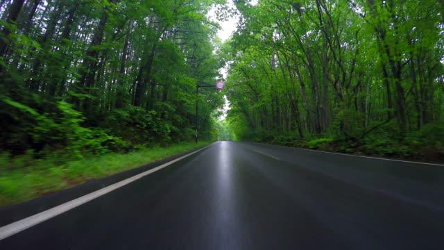 雨の中の田舎道を運転 - 主観視点点の映像素材/bロール