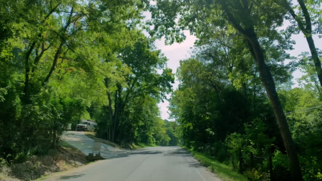 vídeos de stock e filmes b-roll de driving down a treelined road near brentwood, tennessee on a bright, sunny day - tennessee
