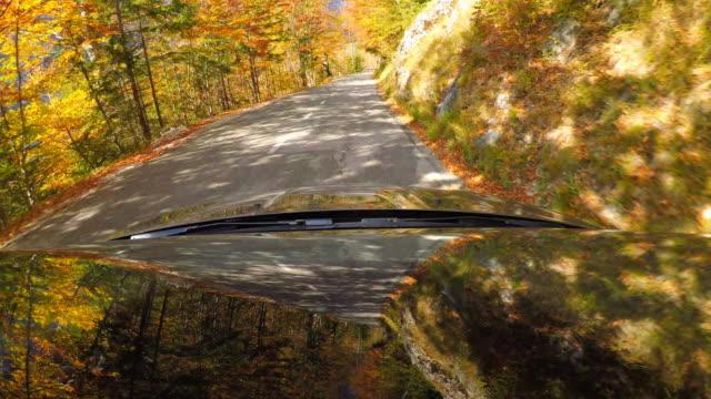 stockvideo's en b-roll-footage met drijf onderaan een bochtige bergweg door herfst bos - verwonderingsdrang
