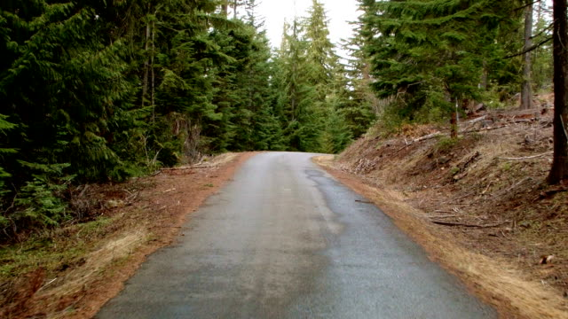 Driving down empty road car shot Wet Rainy Cascade Mountain Oregon Forest in Spring 3