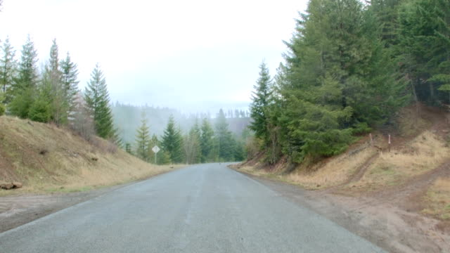 Driving down empty road car shot Wet Rainy Cascade Mountain Oregon Forest in Spring