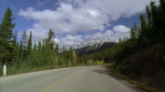 WS CAR POV driving down Icefields Parkway/ Banff National Park, Alberta, Canada