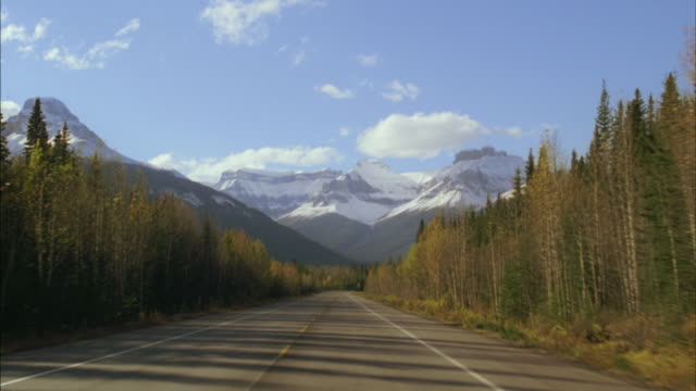 ws car pov driving down icefields parkway/ banff national park, alberta, canada - car point of view stock videos and b-roll footage