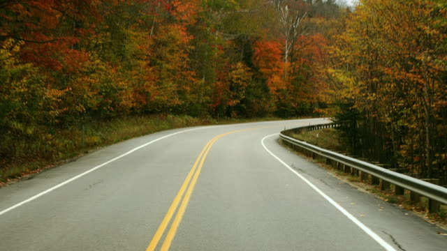 t/l ws pov driving down kancamagus highway / new hampshire, usa - curve stock videos and b-roll footage