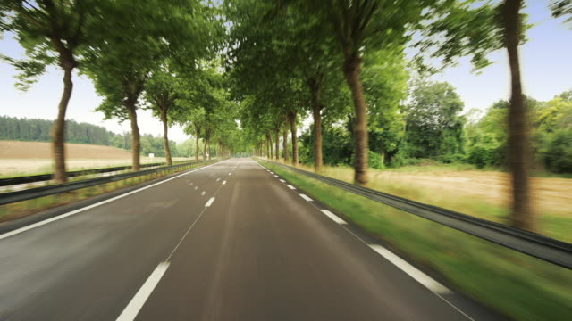 vídeos y material grabado en eventos de stock de t/l ws pov driving down rural road / burgundy, france - vía