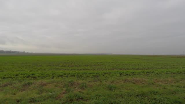 vídeos y material grabado en eventos de stock de pov driving down rural road, side view - seto