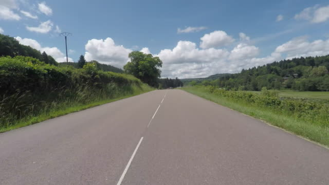 pov driving down rural road - マツ科点の映像素材/bロール