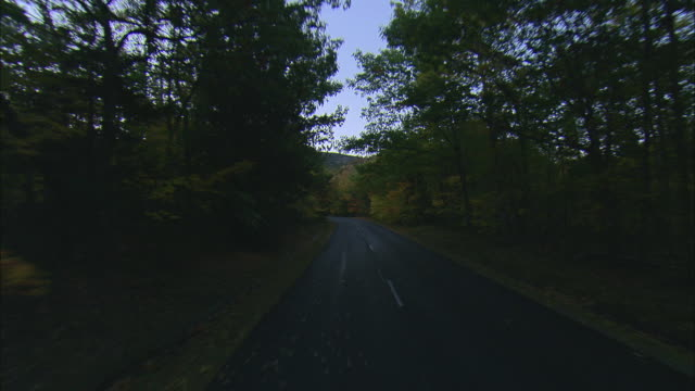 vídeos de stock, filmes e b-roll de pov driving down street lined with colorful foliage at acadia national park / mount desert island, maine, united states - formato letterbox