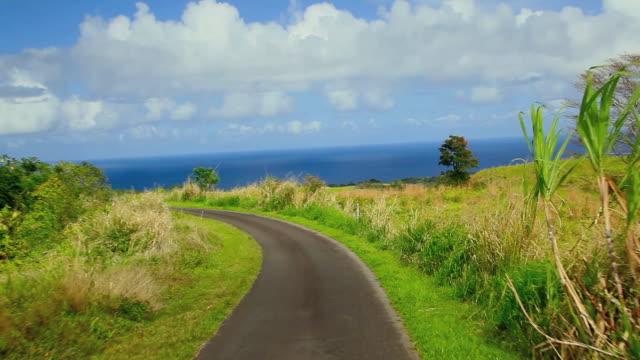 vídeos de stock e filmes b-roll de t/l pov driving down winding rural road toward ocean / umauma, hawaii, usa - big island ilhas do havai