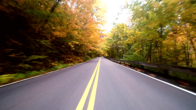 driving for the foliage in new england - moving down video stock e b–roll