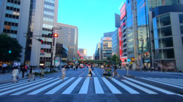 driving ginza street at dusk - plusphoto stock videos & royalty-free footage