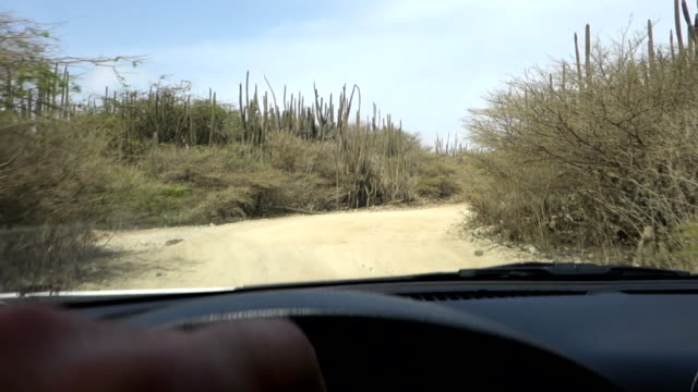 driving in arikok national park - national park stock videos & royalty-free footage