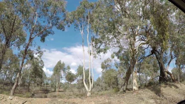 stockvideo's en b-roll-footage met driving in car along dirt road verge, embankment and past trees, fields and farms in rural landscape country australia - wildernis