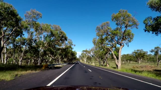 driving in country rural australia on highway with blue sky, new south wales - car point of view stock videos & royalty-free footage