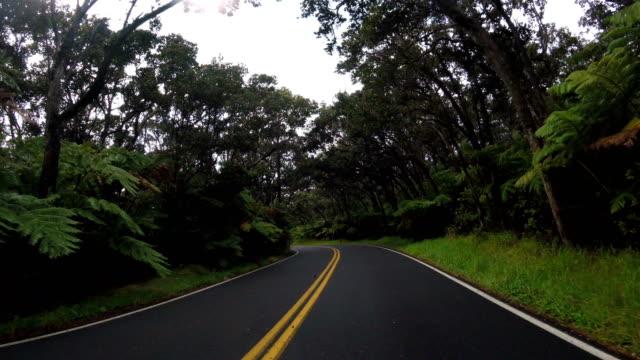 autofahren in hawaii: big island - ländliche straße stock-videos und b-roll-filmmaterial