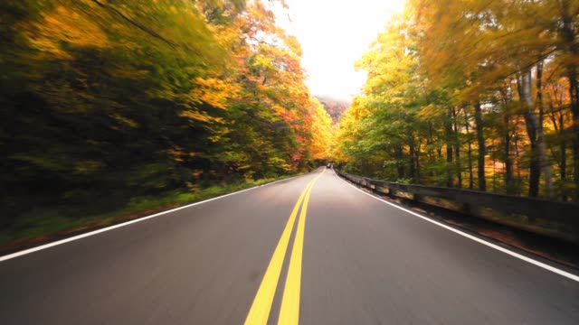 driving in new england for the autumn season - moving down stock videos & royalty-free footage