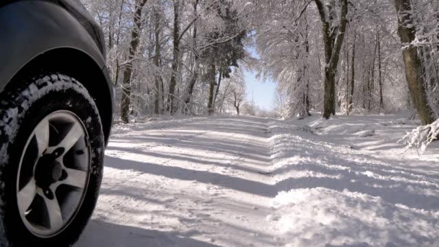 雪の多い冬の森で運転 - 状態点の映像素材/bロール