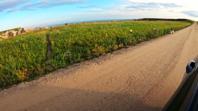 悪い土地で運転する - バッドランズ国立公園点の映像素材/bロール