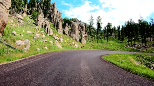 driving in the black hills in south dakota - inquadratura da un'automobile video stock e b–roll