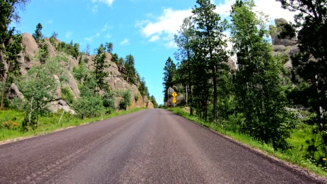 driving in the black hills in south dakota - dakota del sud video stock e b–roll