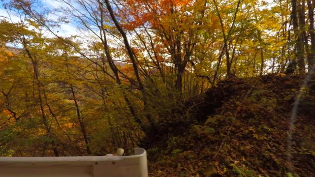 秋 - 側面図での運転 - 山間道路点の映像素材/bロール