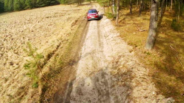 vídeos de stock, filmes e b-roll de dirigindo na floresta vista aérea. - estrada em terra batida