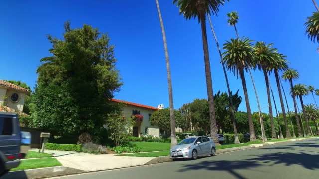 driving in tropical beverly hills next to movie celebrities homes with palm trees in los angeles, california, 4k - annual event stock videos & royalty-free footage