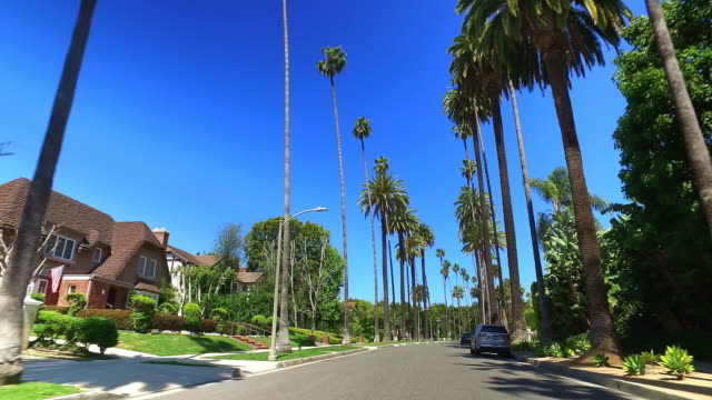 driving in tropical beverly hills next to movie celebrities homes with palm trees in los angeles, california, 4k - celebritet bildbanksvideor och videomaterial från bakom kulisserna