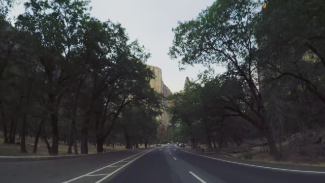 pov driving in yosemite national park, california - yosemite national park stock videos & royalty-free footage