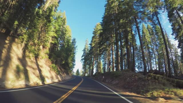 pov driving in yosemite national park, tioga pass - yosemite national park stock videos and b-roll footage