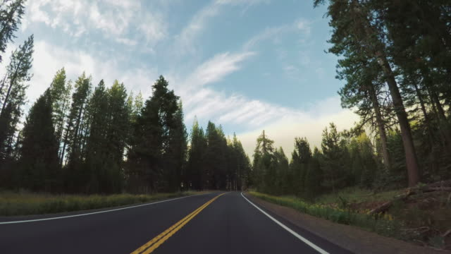 pov driving in yosemite national park, tioga pass - mountain pass stock videos & royalty-free footage