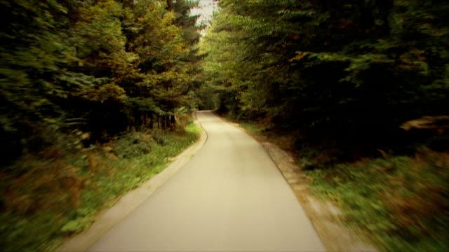 vídeos de stock, filmes e b-roll de dirigindo em uma estrada florestal: hd, ntsc, pal - cena rural