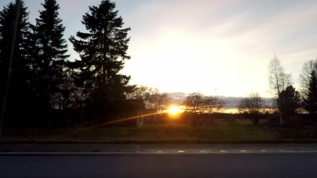 vídeos de stock, filmes e b-roll de driving on a highway with sunset on the horizon and the sun moving through the trees, finland - ponto de vista de carro