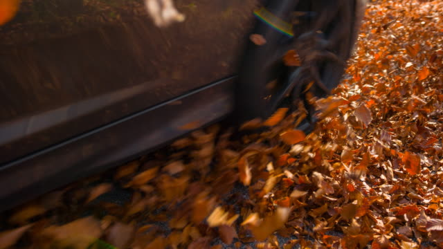 driving on a leaf covered road in autumn - tyre stock videos & royalty-free footage