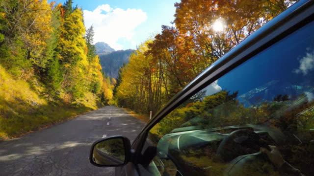 fahrt auf einem bergpass durch bunten herbstwald - straßenrand stock-videos und b-roll-filmmaterial