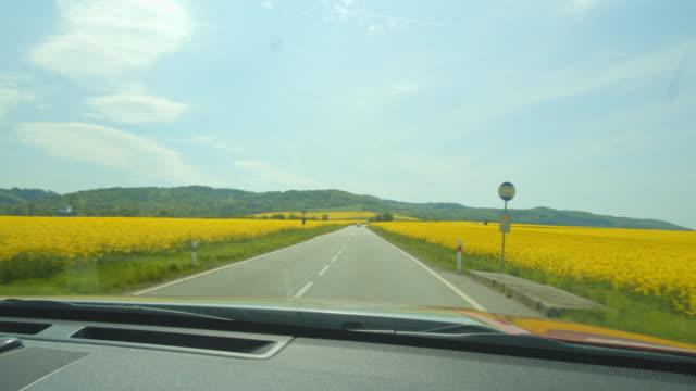 pov モラヴィアの田舎のカノーラ畑の間の道路を運転 - フロントガラス点の映像素材/bロール