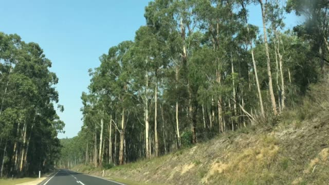 Driving on a road in Victoria Australia