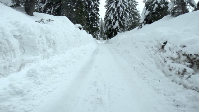 driving on a snowy forest road - off road car stock videos and b-roll footage