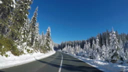 Driving on an empty road along forest in winter