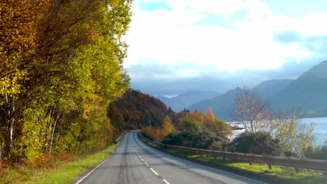 slo mo driving on autumn road - moving down stock videos & royalty-free footage