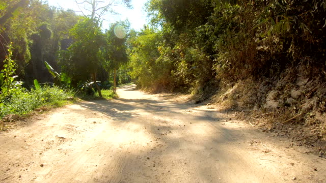 4k pov driving on dirt road in rainforest. - strada in terra battuta video stock e b–roll