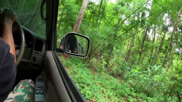 driving on dirt road in to tha wild - rear view mirror stock videos & royalty-free footage