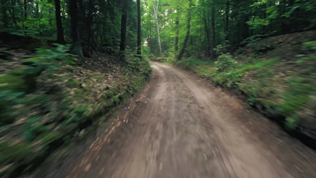stockvideo's en b-roll-footage met driving on forest road - onverharde weg