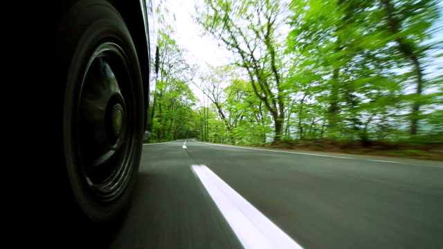 stockvideo's en b-roll-footage met driving  on green forest road - autoband